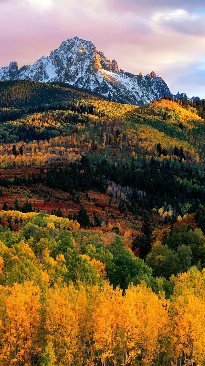 mountain, beauty in nature, scenics, nature, tranquility, mountain range, tranquil scene, landscape, outdoors, no people, tree, sky, autumn, yellow, day, snow, scenery, range
