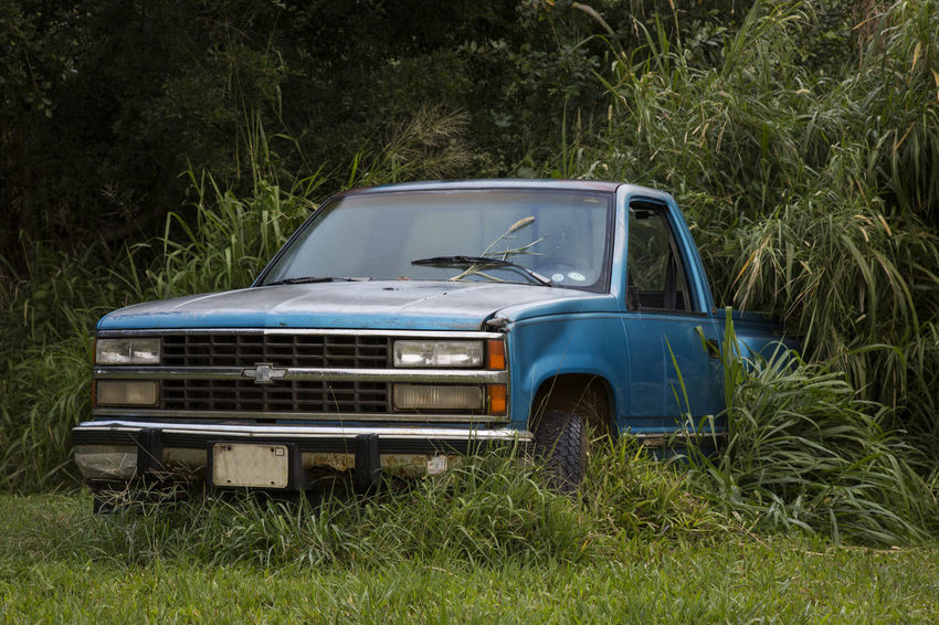 Forgotten and overgrown broken car in backyard Automobile Backyard Forgotten Glitch Grass Malfunction Overgrown Abandoned Brake Down Car Jungle Land Vehicle Lush Green Truck