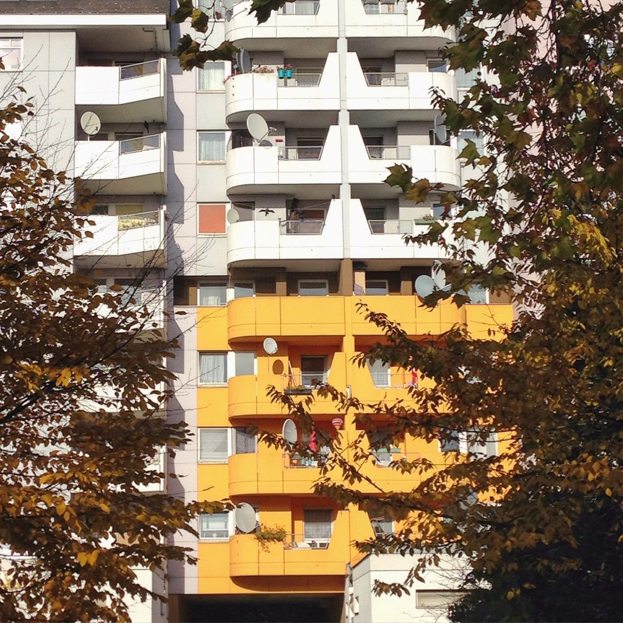 Abstract Architecture Architecture Autumn Colors Balcony Berlin Photography Berliner Ansichten Berlinstagram Building Exterior Built Structure Colour Of Life Façade Kreuzberg Light Low Angle View Minimal Modern Architecture Nature No People Outdoors Pattern Plattenbau Structure Tree Yellow