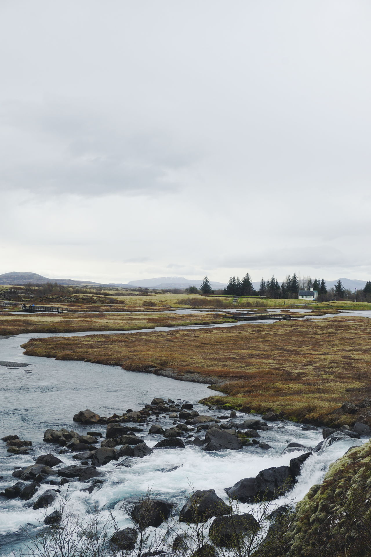 Thingvellir National Park Iceland Beauty In Nature Cloud - Sky Day Golden Circle Hot Spring Iceland Iceland Trip Iceland_collection Icelandtrip Landscape Nature No People Outdoors Scenics Sky Thingvellir Thingvellir National Park Tranquil Scene Tranquility Travel Destinations Tree Water þingvellir The Great Outdoors - 2017 EyeEm Awards