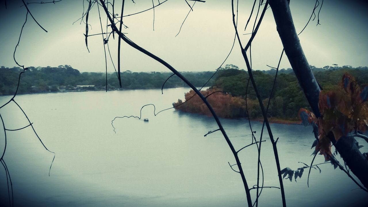 lake, nature, water, beauty in nature, tranquility, outdoors, tree, no people, scenics, sky, plant, day, dead tree, close-up