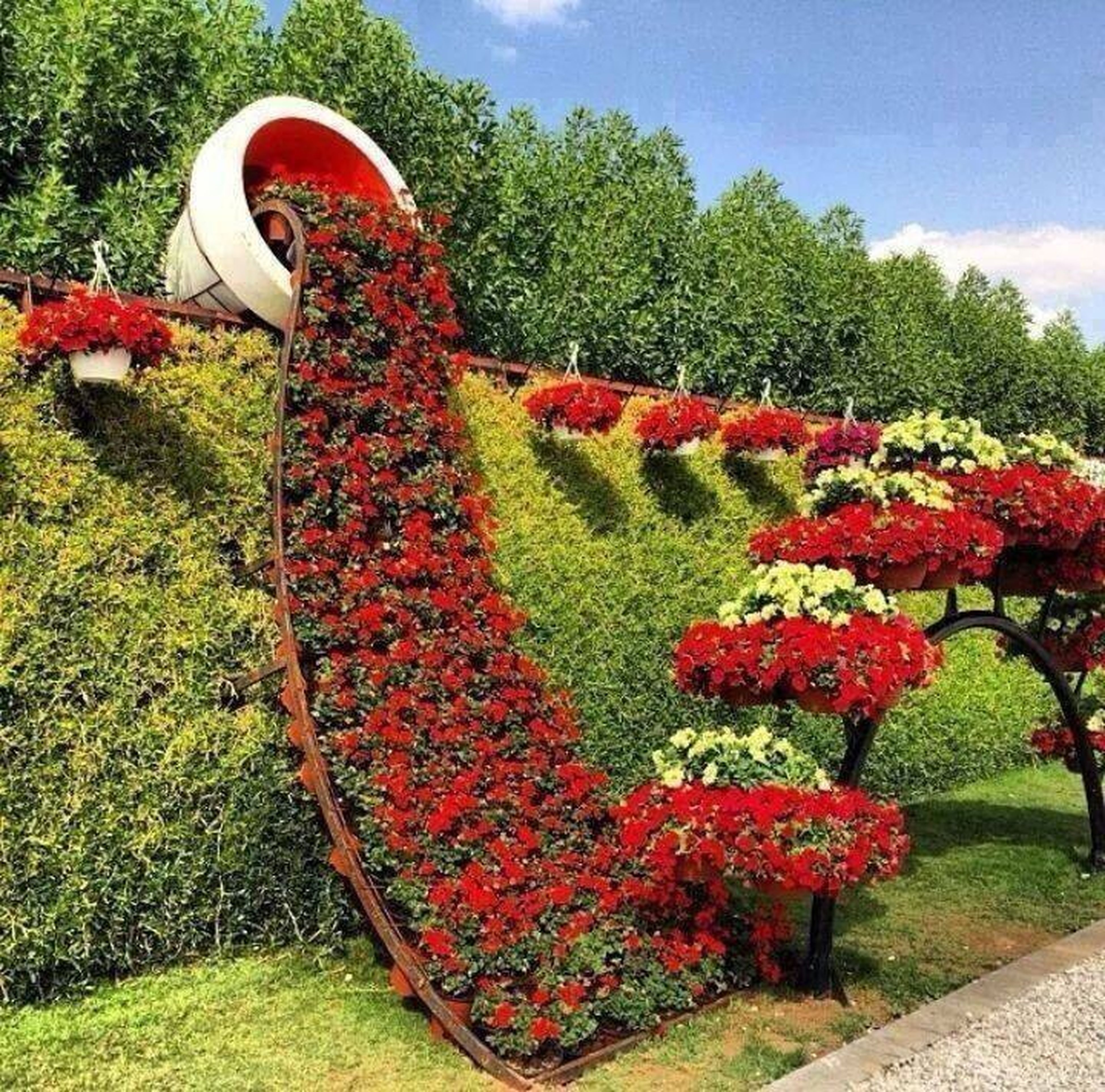 tree, growth, red, grass, park - man made space, flower, plant, green color, nature, field, day, sky, outdoors, sunlight, beauty in nature, tranquility, garden, park, lawn, no people