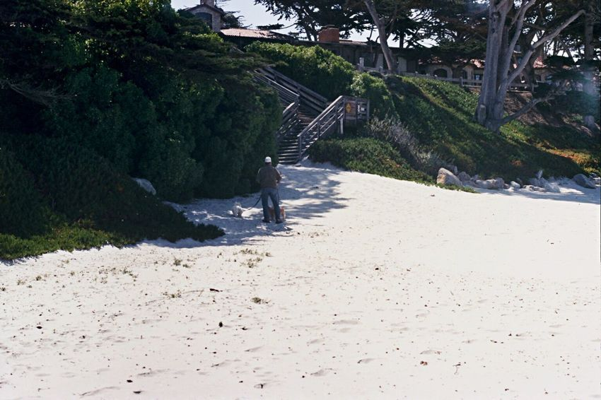 Walking Outdoors One Person Carmel-by-the-sea Film Zenit122 Koduckgirl Ektar100 Beach Sand Carmel Beach
