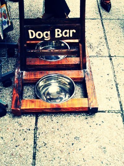 Animal Lover Animal Themes Close-up Communication Day Dog Nice No People Outdoors Street Photography Streetphotography Water Bowl High Angle View On The Floor