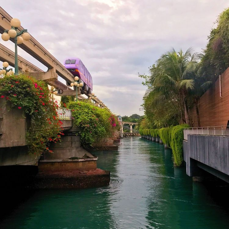 Monorail  Water Nature Sky Built Structure Beauty In Nature Architecture Flower Building Exterior Plant No People Tree Waterfront Cloud - Sky Outdoors Growth Day Sentosa Singapore Transportation