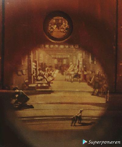 Kijkdoos drukkerij museum joure