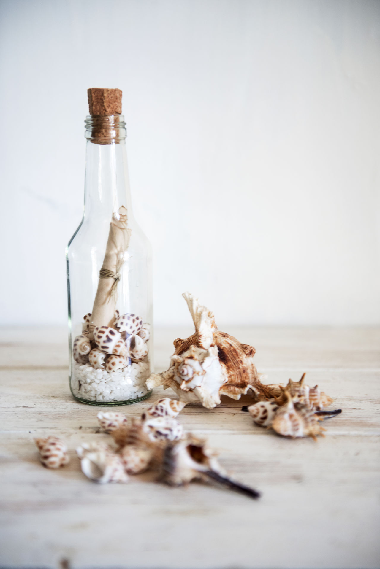 Message In A Bottle Bottle Message In A Bottle Shells Still Life Still Life Photography Summer Table White White Color Wood