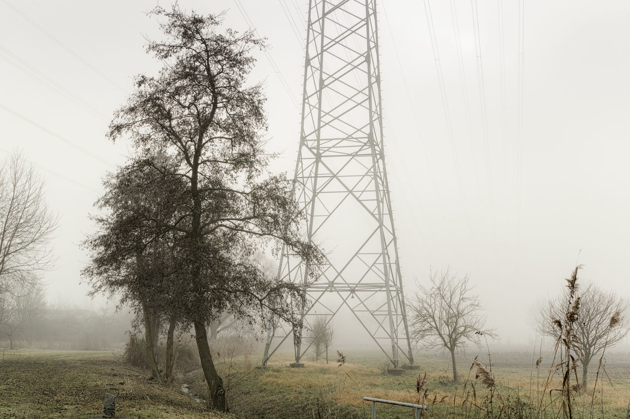 Ironman Beauty In Nature Clear Sky Day Electricity  Field Foggy Grass Growth Ironman Landscape Landscape_photography Mist Nature No People Outdoors Pylon Scenics Sky Tree Tree