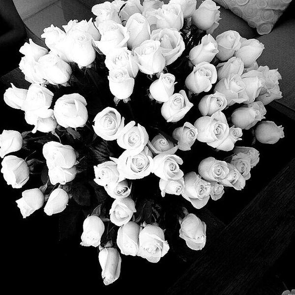 Black & White Black And White