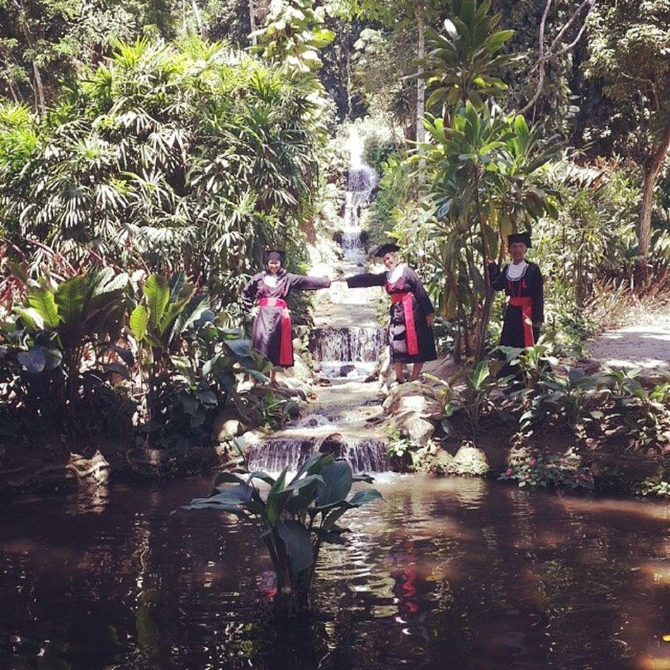 Encantada com tanta beleza! Jardim botânico.