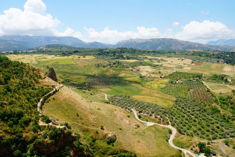 Andalucía Beauty In Nature Cloud - Sky El Tajo Canyon Green Color High Angle View Landscape Mirador De Ronda Mountain Range No People No Photoshop Outdoors Ronda Spain Scenics Sony A6000 View Point