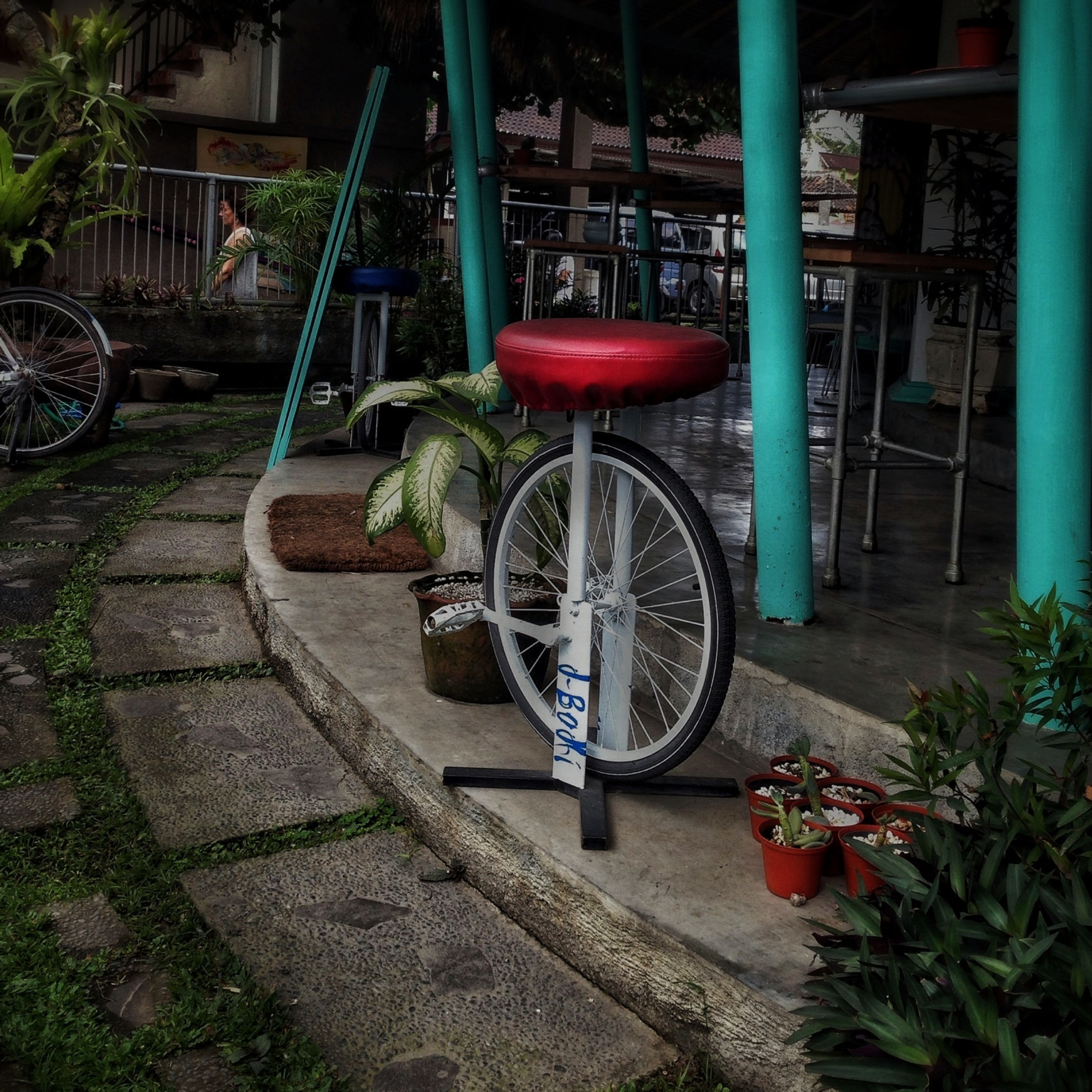 bicycle, plant, transportation, potted plant, mode of transport, stationary, parking, flower, land vehicle, built structure, building exterior, outdoors, growth, no people, day, parked, sidewalk, wheel, architecture, front or back yard