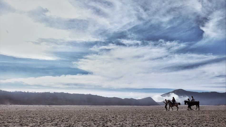 The Week On EyeEm Horse Scenics Landscape Bromo INDONESIA Beauty In Nature Outdoors