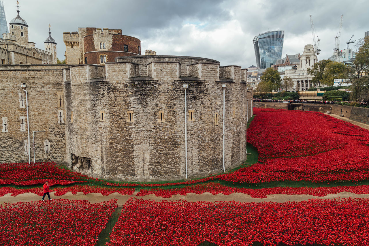 Poppy display around the Tower of London... City City Life Cityscape Cityscapes Iconic Iconic Buildings Iconic Places London London Town Poppies  Poppy Poppy Appeal Poppy Display Red Remember Remembering Remembrance Sightseeing Tourism Tourist Tourist Attraction  Tourists Tower Of London Uk War