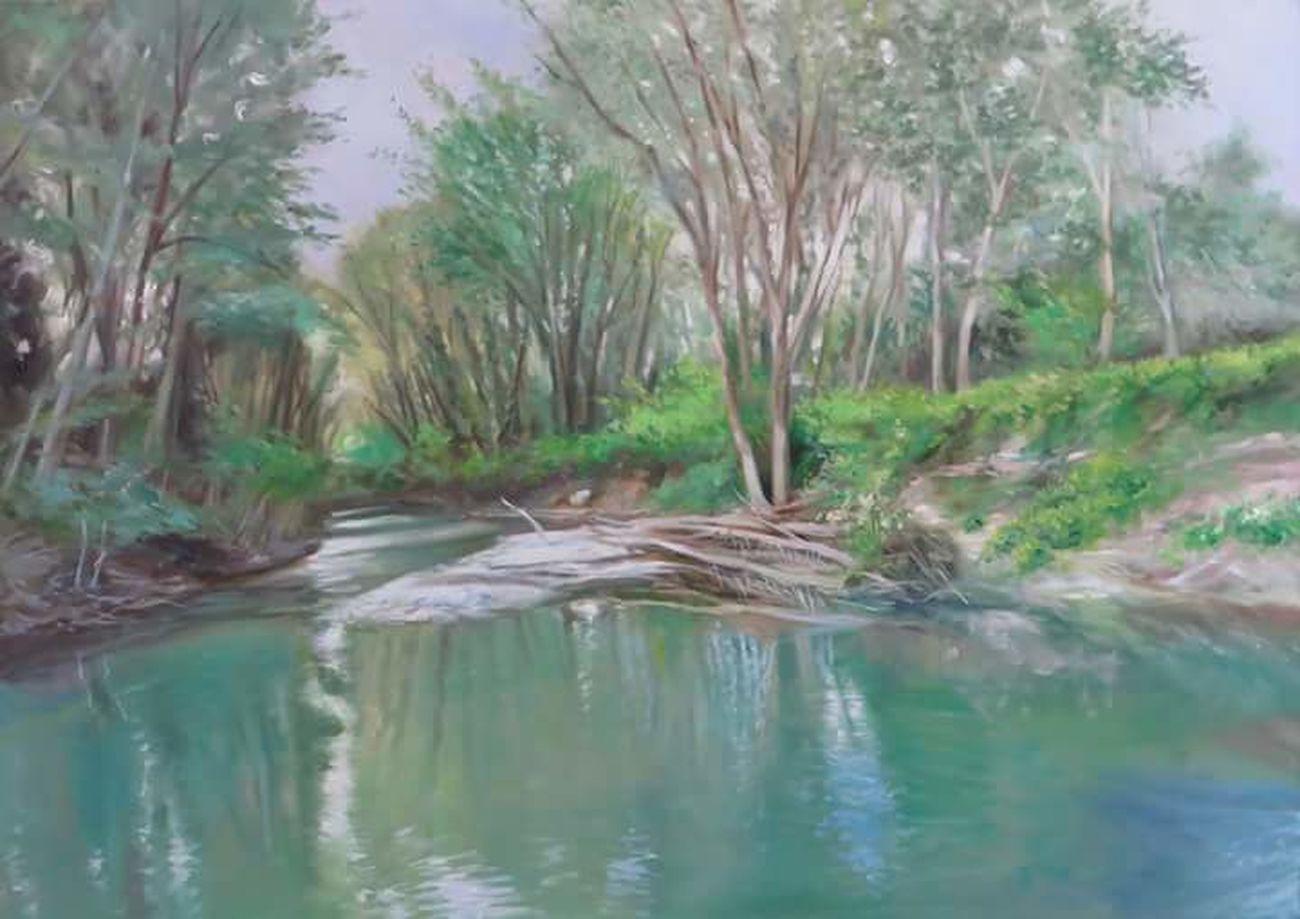 Fiume Montone. Oil Painting Oiloncanvas Oliosutela 70x50. 2017