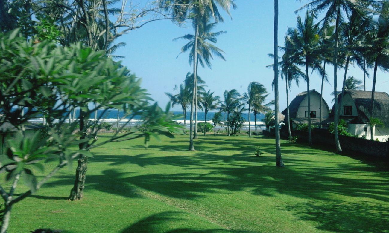 Baliisland BaliAwesome MissBali