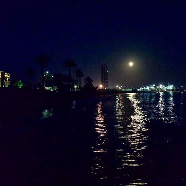 Mersin Tasucu Gece Dolunay Yakamoz Hurmaağaçları Liman Akdeniz