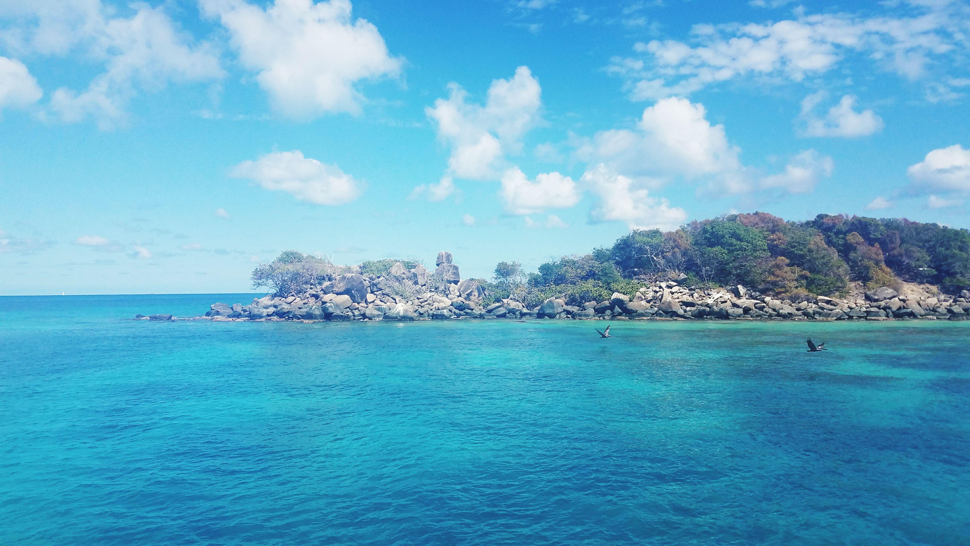 shades of blue. Wanderlust Globetrotter Naturephotography Puerto Rico Islapalomino Sea Travel Destinations