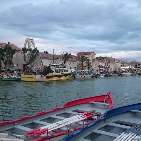 Port de Camargue