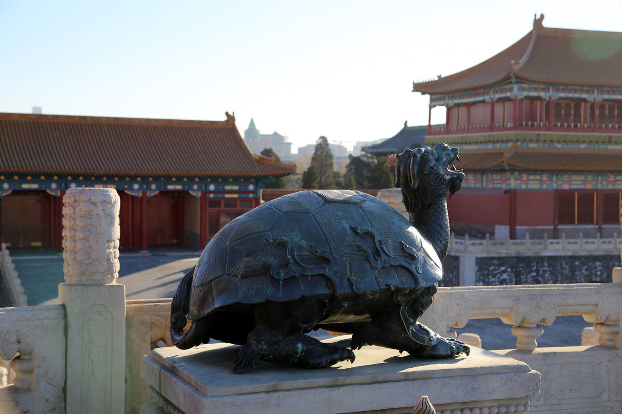 Turtle Stateu with Pagoda Palace in the Forbidden City, Beijing. Architecture Building Exterior Built Structure Clear Sky Day Horizontal No People Outdoors Roof Sky Travel Destinations Gate Of Heavenly Peace Forbidden City Forbbiden City Forbidden City, Beijing, China Tourism Scenics Place Of Worship Ancient History Qing Dynasty Verbotene Stadt Close-up Detail Turtle Statue