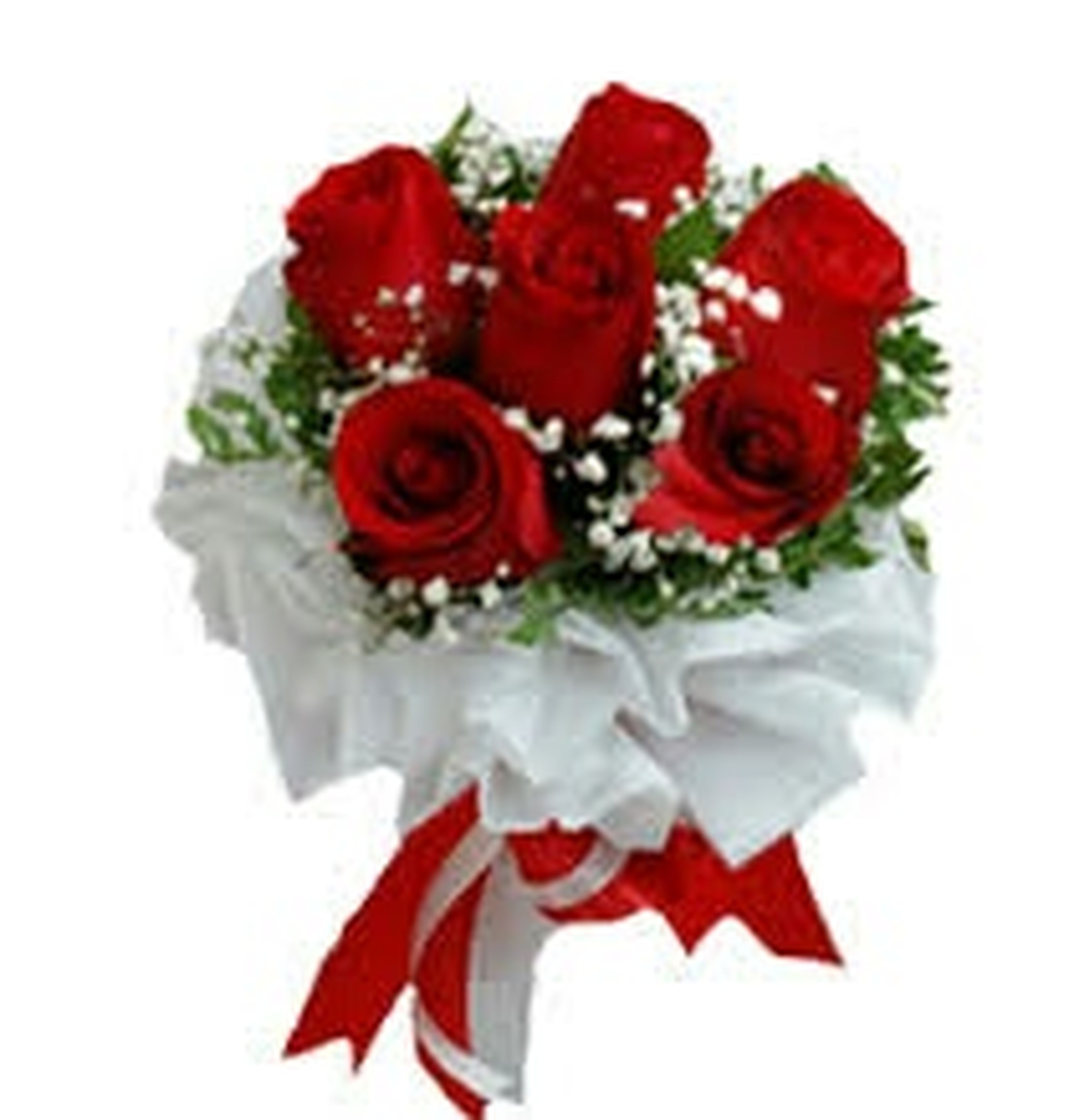 freshness, white background, flower, studio shot, red, petal, rose - flower, close-up, flower head, indoors, fragility, rose, still life, beauty in nature, no people, high angle view, single flower, white color, food, sweet food