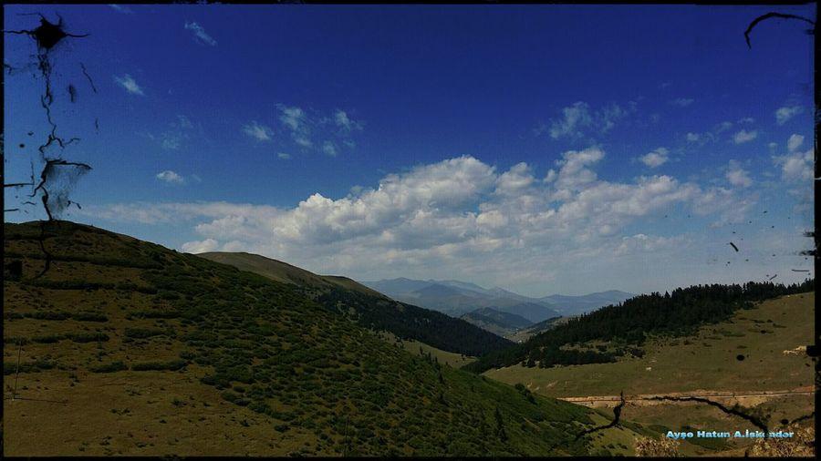 EyeEm Neweyeem Deklansorsesi Turkey Wood Autumn🍁🍁🍁 Park Autumnleaves #tree Forest TURKEYgiresun Summer Camping Photos First Eyeem Photo Yayla Plateau