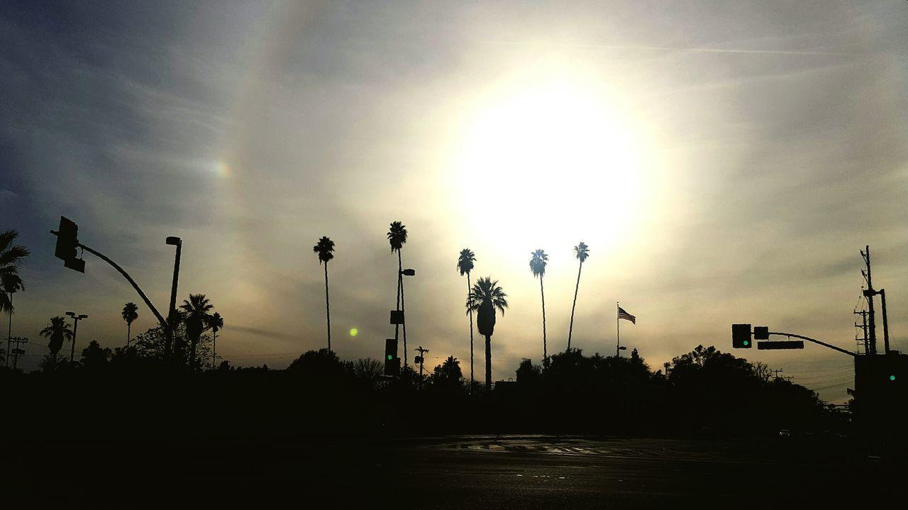 LA SkyLine Sun Glare Street Light Silhouette Sunlight Galaxys6 Galaxy S6 Cloudy Day Skyporn
