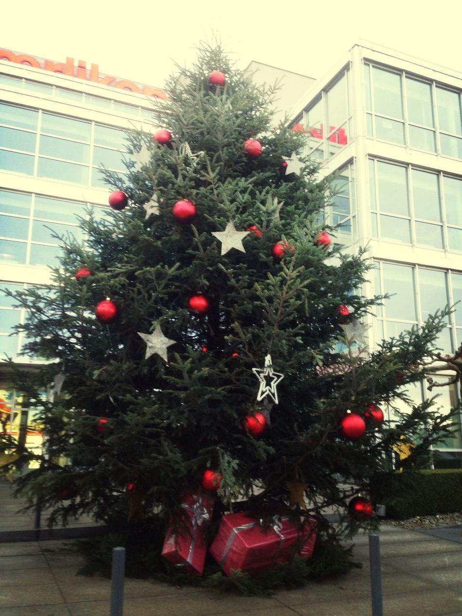 Christmas Tree Boost Filter Walking Around EyeEmSwiss