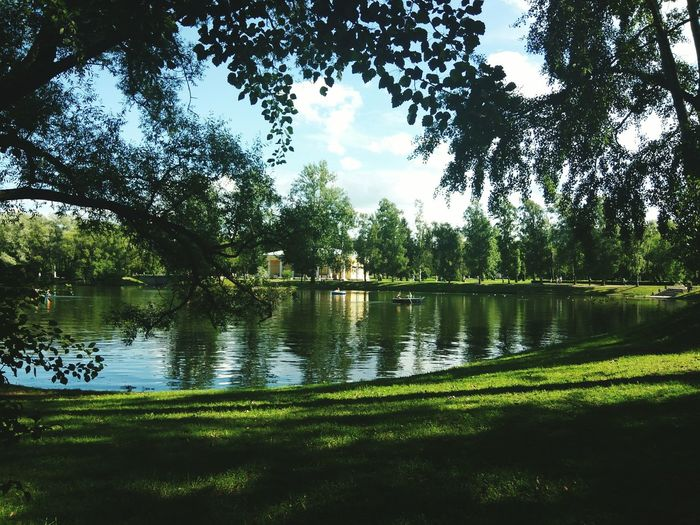 Park, Water, Green