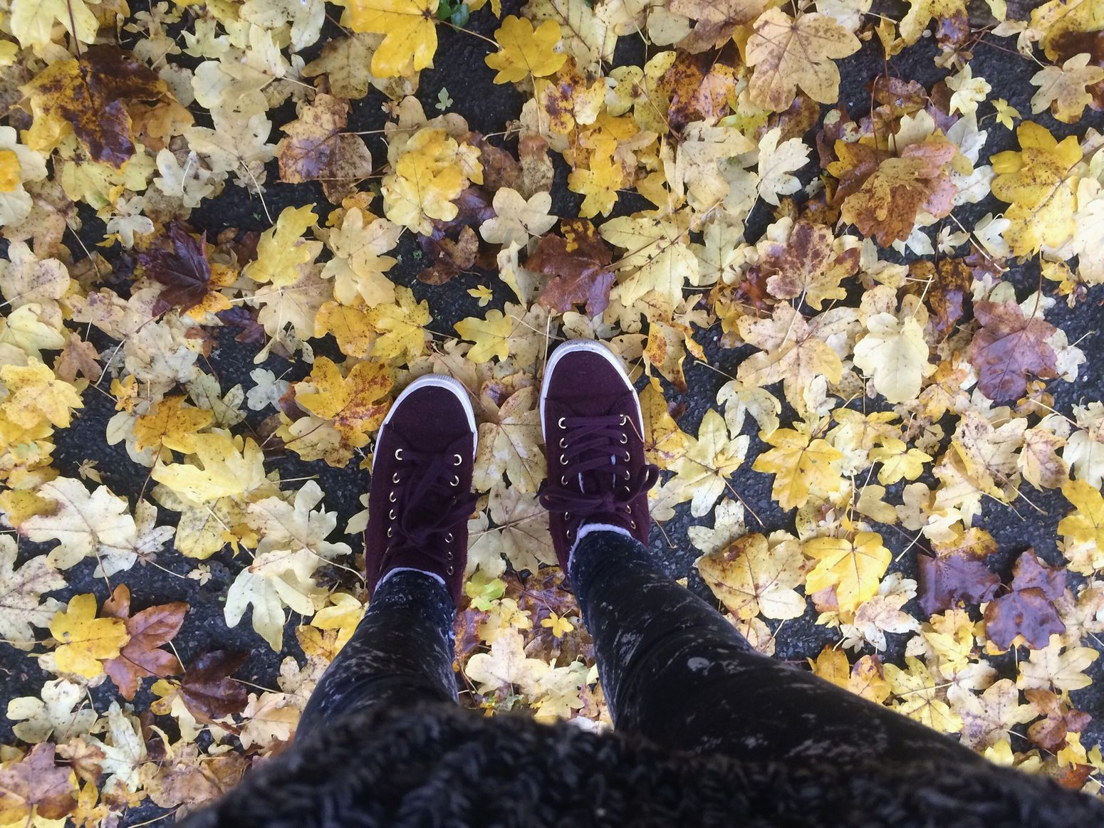 🍁🍂🍃 Autumnal Leaves Autumn Pretty Colours Mess Walking Home Sorry It's Been A While... Outfit On Point