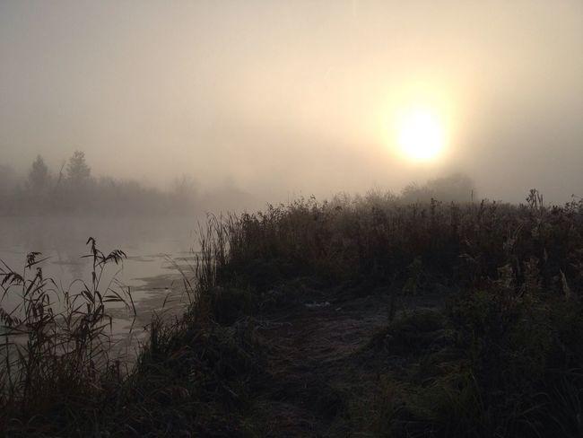Fog Lake Morning Russia Siberia Nature