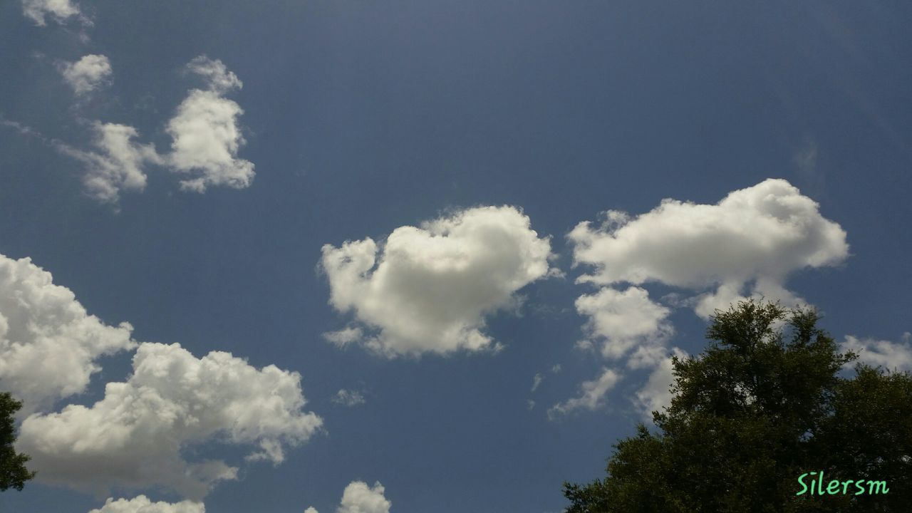 What do you see, if anything at all. Clouds And Sky Sunnydays Hanging Out Nature