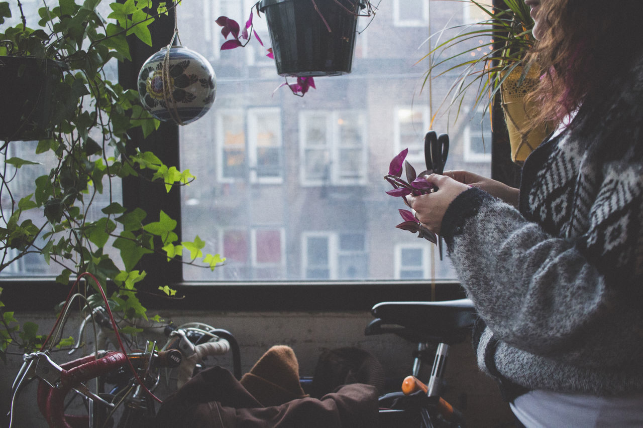 Bushwick, Brooklyn Brooklyn Bushwick Garden Gardening Hanging Indoors  Indoors  New York One Person Plants Scissors Window Winter Young Women