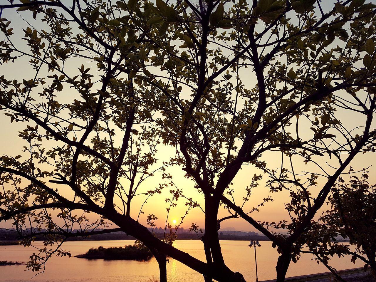 남양주 카페 요새에서... Sky Spring Springtime Beautiful 좋아요 이쁨 가볼만한곳 추천합니다 맑은날 City Life Daily Life Sunset Sun Skyline 카페 카페스타그램 남양주카페 분위기깡패
