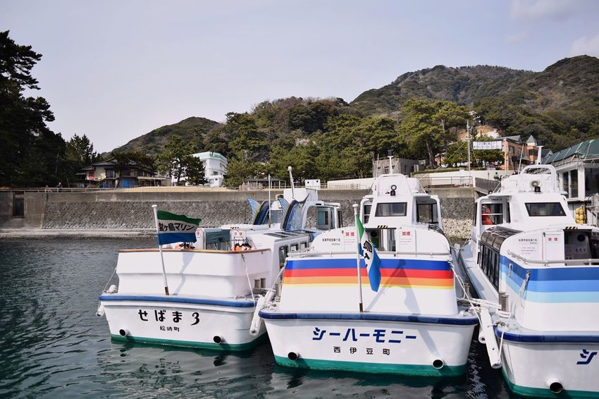 Nautical Vessel Transportation Mode Of Transport Moored Water Outdoors Day Tree No People Building Exterior Sky Nature Architecture Pedal Boat Yacht Tranquil Scene Cloud - Sky Sea Japan Tranquility Awesome Nature Blue Boat Follow EyeEmNewHere