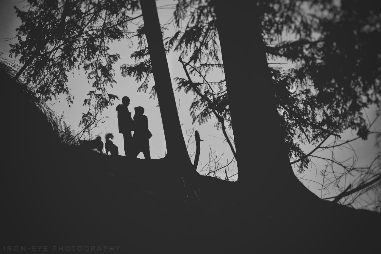 The perfect life Two People Silhouette Tree Bonding Real People Togetherness Leisure Activity Ironeyephotography Beautiful Woman Animal Crest Animals In The Wild Beauty In Nature Travel Day Landscape Zen-like Woods Forest Photography Forestwalk Mountains Solotraveler
