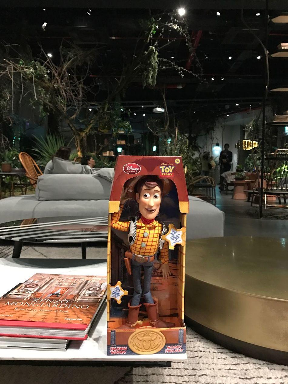 woody in boxter milan cinema Toys Toystory Pixar  Disney Milano Boxter