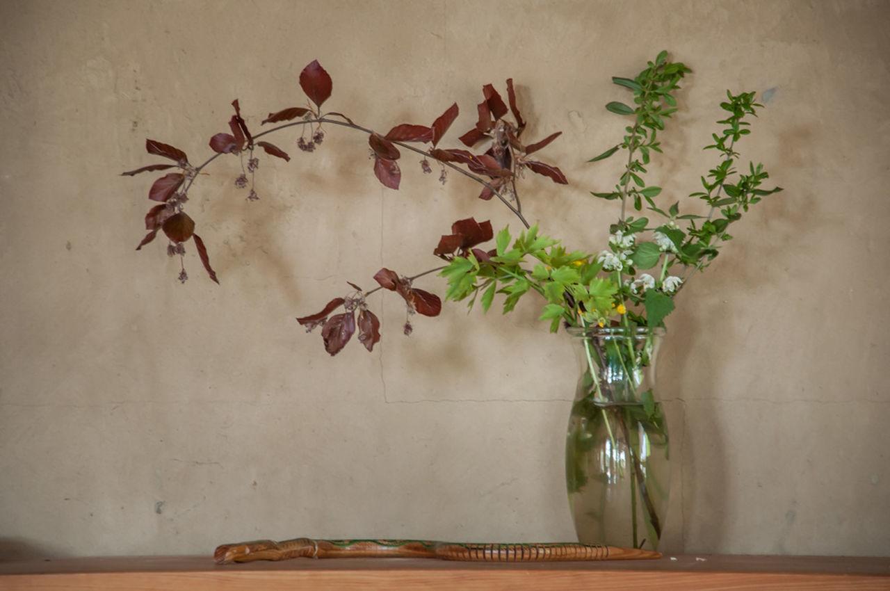 Close-up Day Decor Decoration Flower Flower Arrangement Fragility No People Petal Plant Still Life Vase