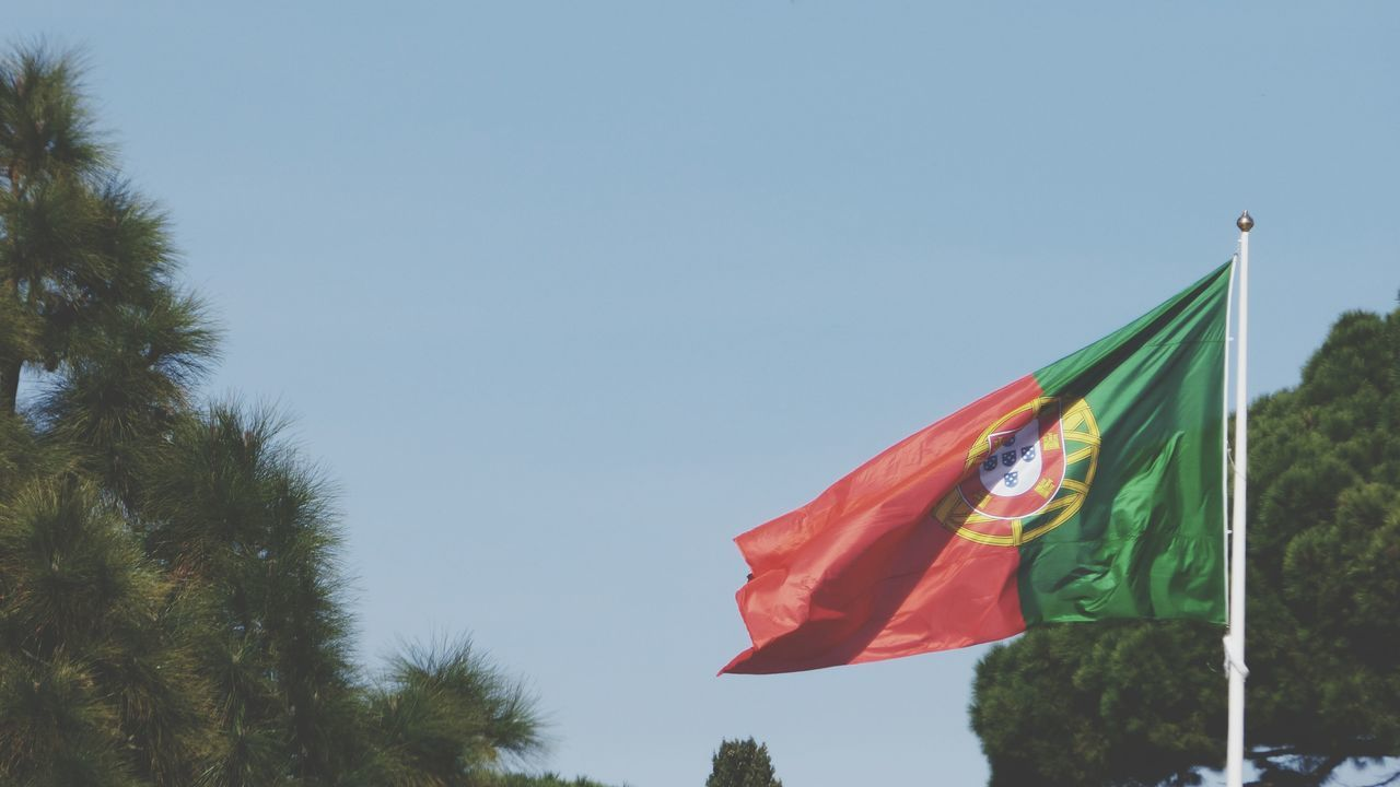 Flag Low Angle View Red Hanging No People Patriotism Unity Day Sky Tree Portugal Flag Portugal Colors Portuguese Flag Lisboa Portugal Sky And Trees Blue Sky