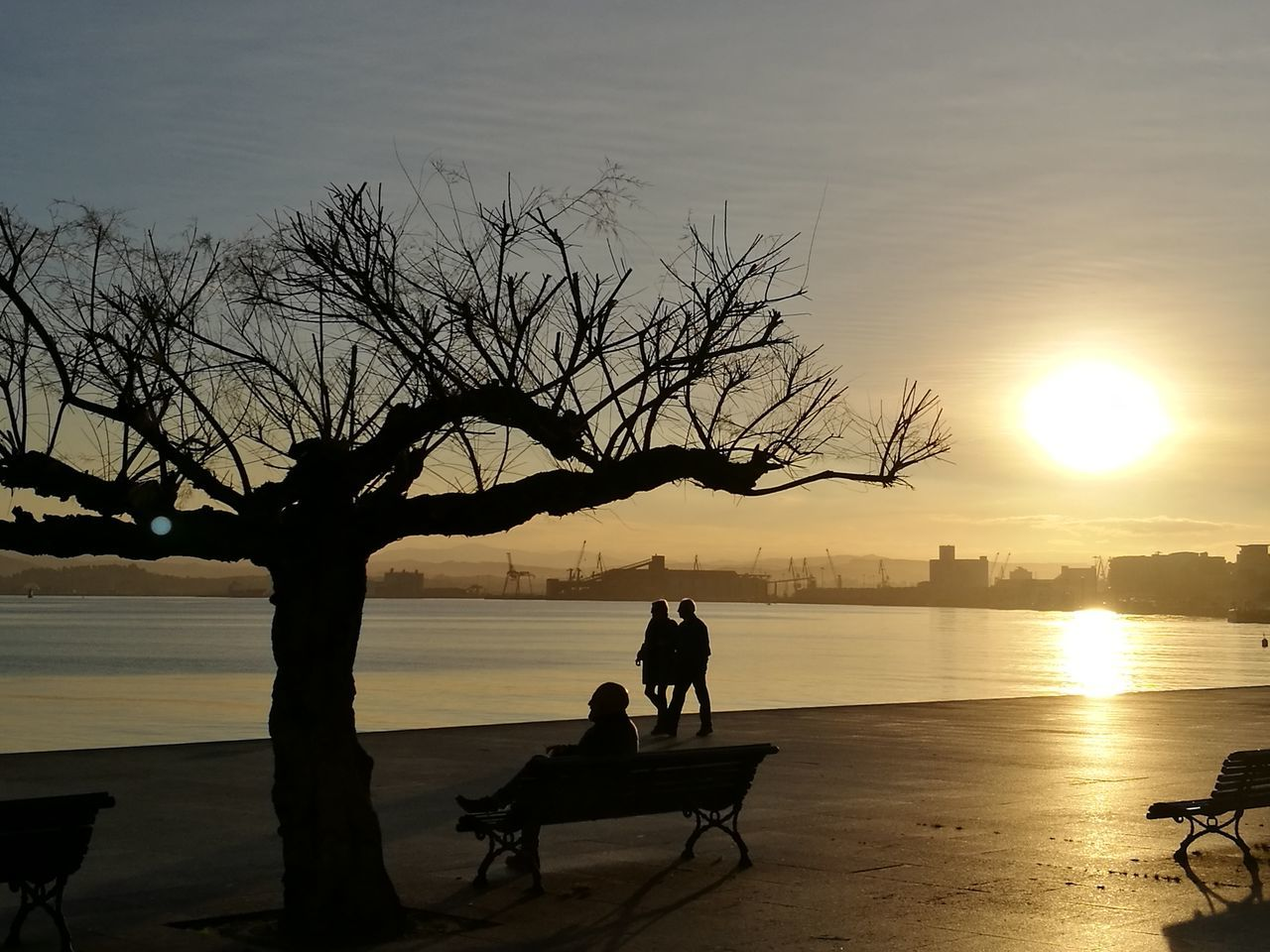 Sunset Water People Adult Tree Outdoors Sky HuaweiP9 EyeEm Vision Santander, Spain Eyemphotography Tree Sunny Day Colors Spain♥ Diciembre Mar Cantábrico Nofilter Finding New Frontiers