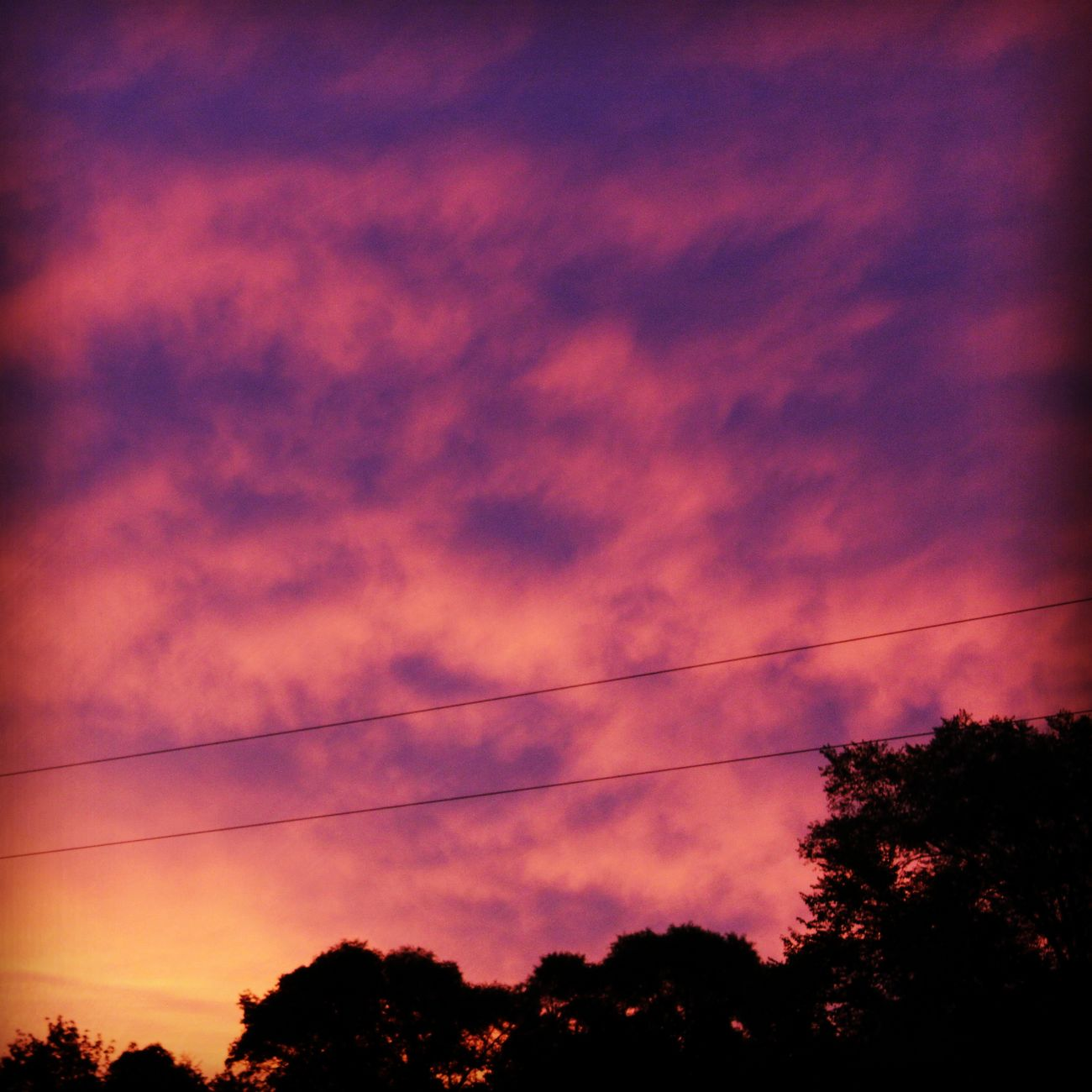Sunrise Sun_collection