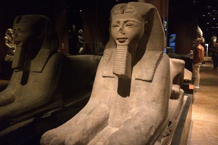 Egyptian Museum King's Room History