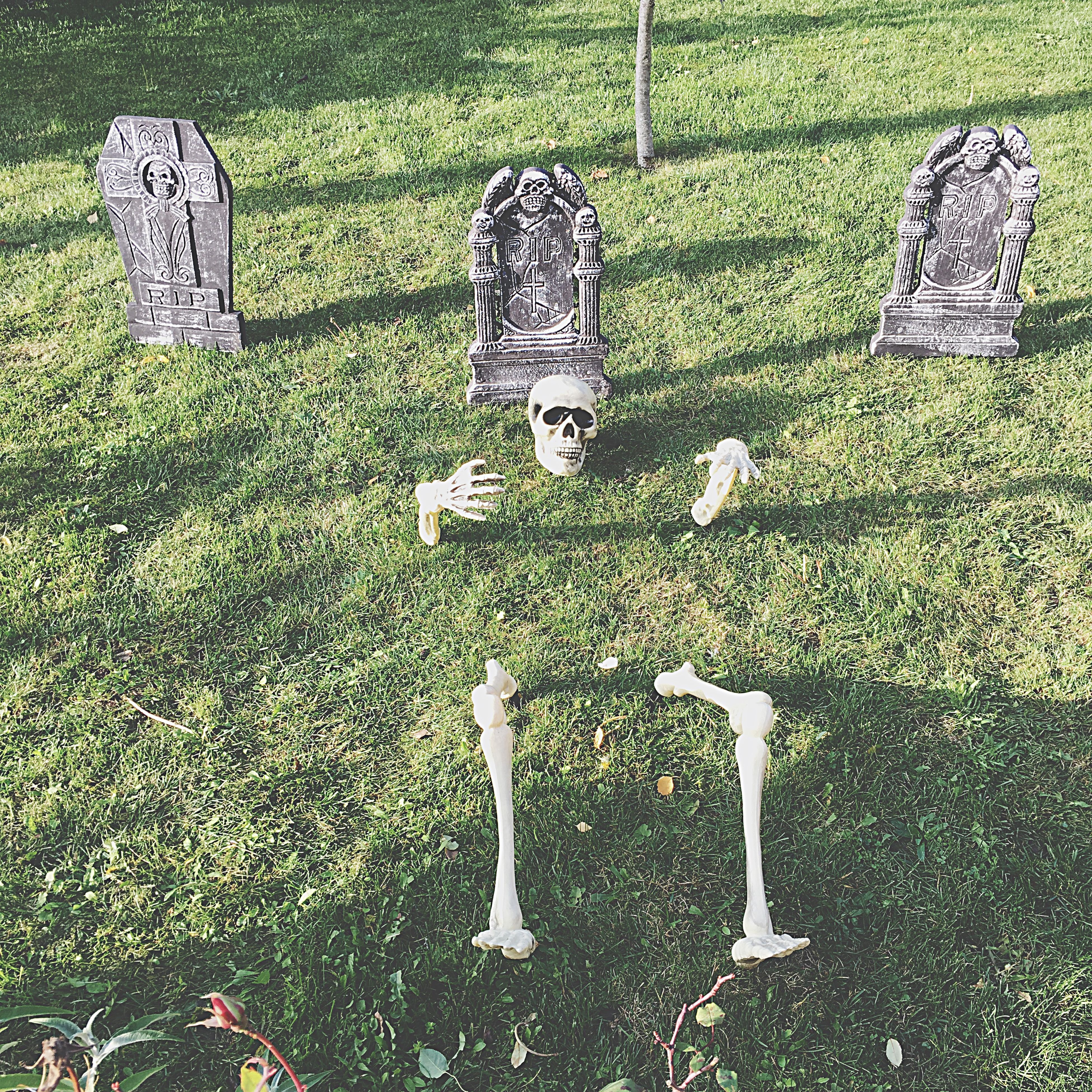 grass, high angle view, field, park - man made space, day, green color, plant, art and craft, art, grassy, outdoors, creativity, cemetery, no people, metal, human representation, bench, lawn, growth, death