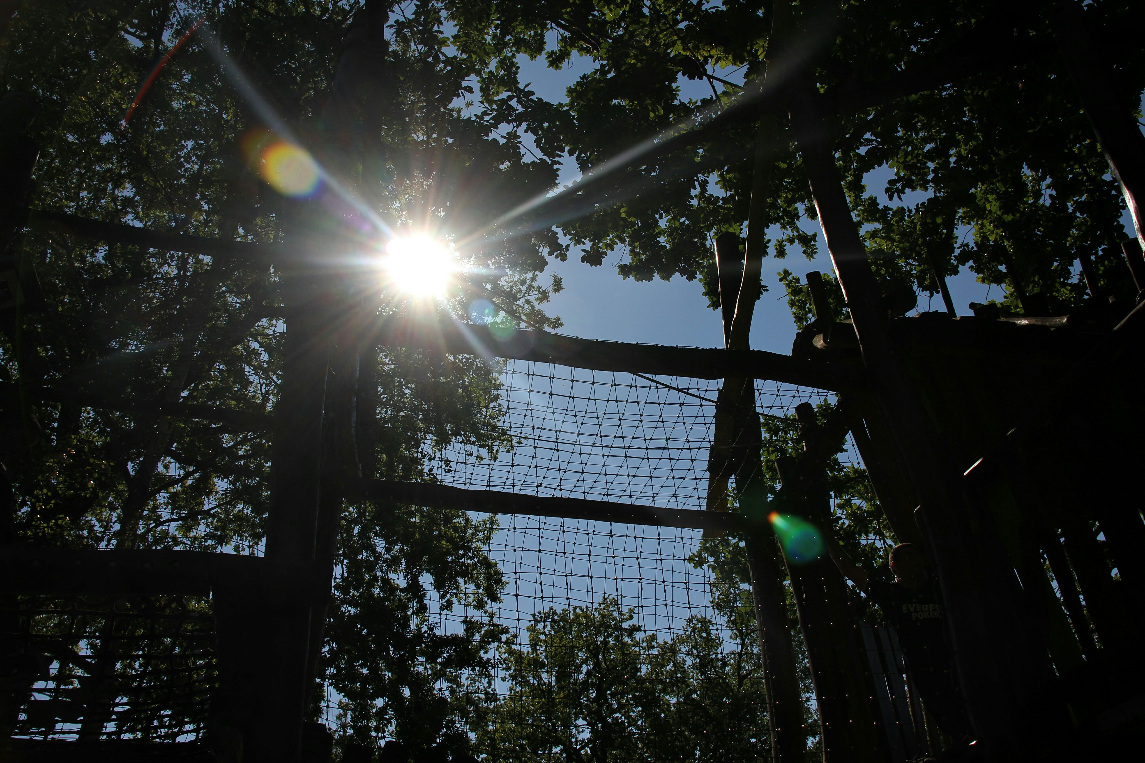 sun, tree, low angle view, sunbeam, sunlight, lens flare, branch, growth, silhouette, nature, tranquility, sky, fence, street light, back lit, outdoors, sunny, tree trunk, clear sky, no people