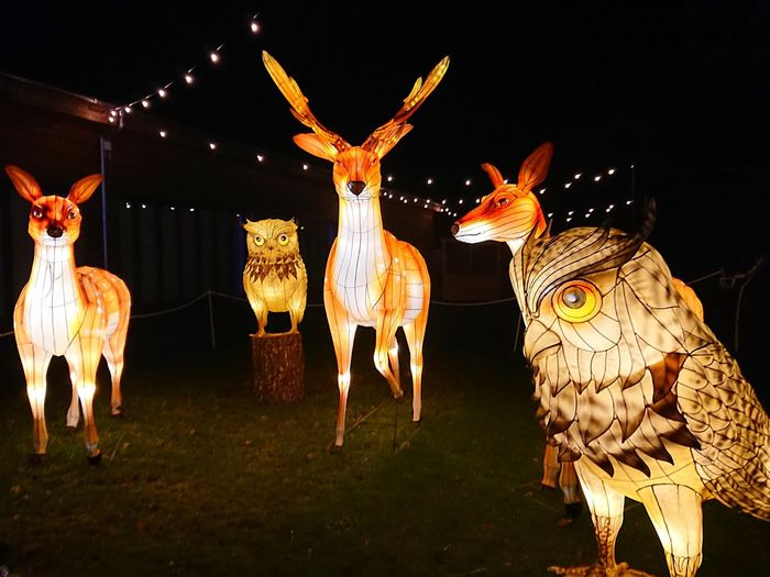 "Longleat ""Festival of Lights """