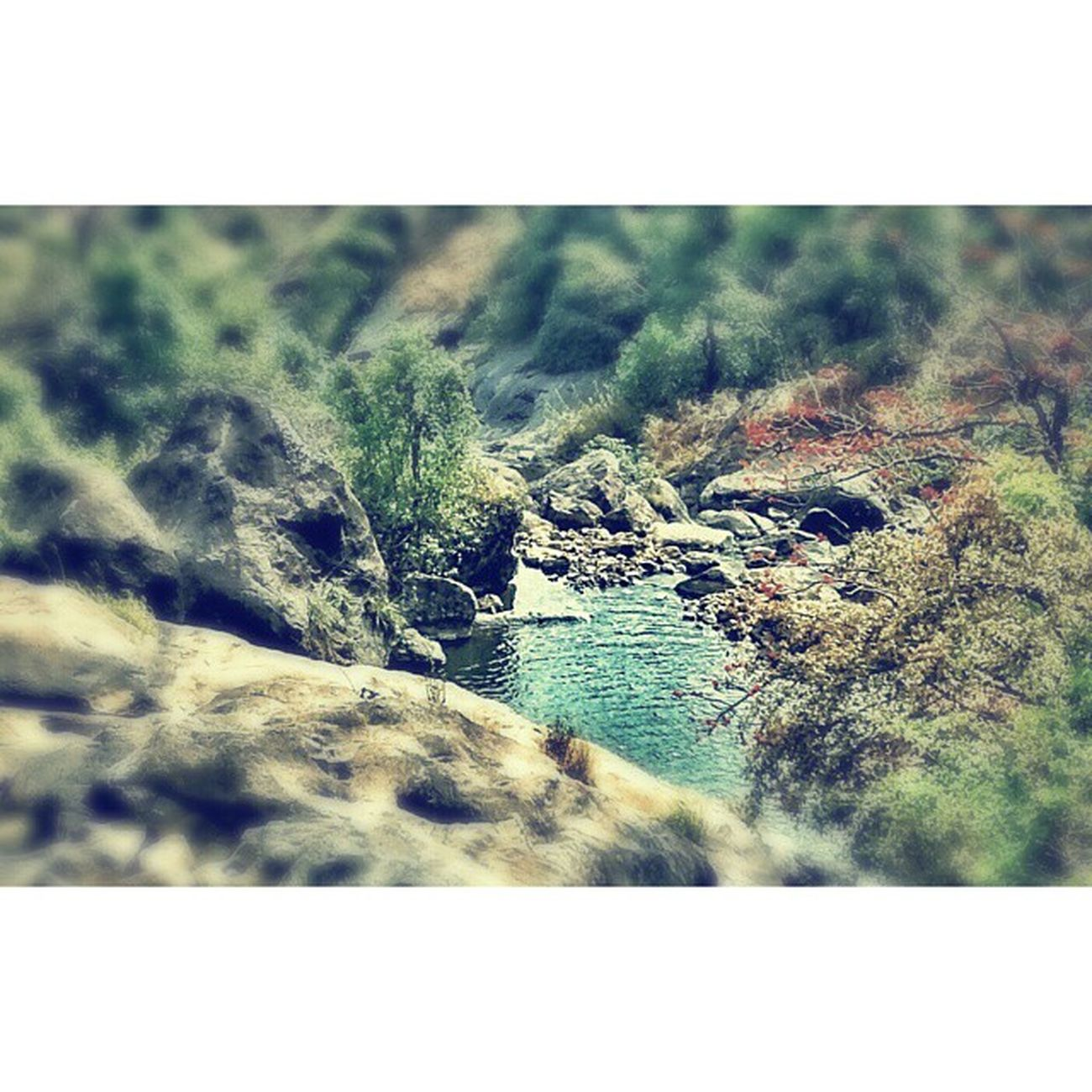 Tilt shift stuff Croppedimage Realphoto Motog Munnar Waterfall Likezen Zengarden Tiltshift Pond Nature Gulmohar Rocks Forest Pristine HD Granular