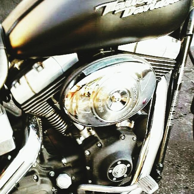 Trucking Harleydavidson HD Enjoying Life Check This Out Taking Photos HarleyDavidsonMotorcycles Dyna Streetbob 2006 Mine ❤ Custombob Love ♥ Desert Life All Year Round Tucson Arizona  Fastnloud All American USA! Made In The Usa Real Hardcore 1% Loud Lets Ride