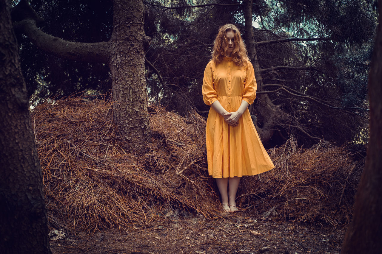Young woman dressed in yellow alone in the woods Forest Front View Nature Night One Person Outdoors People Spooky Standing Tree Witch Young Adult