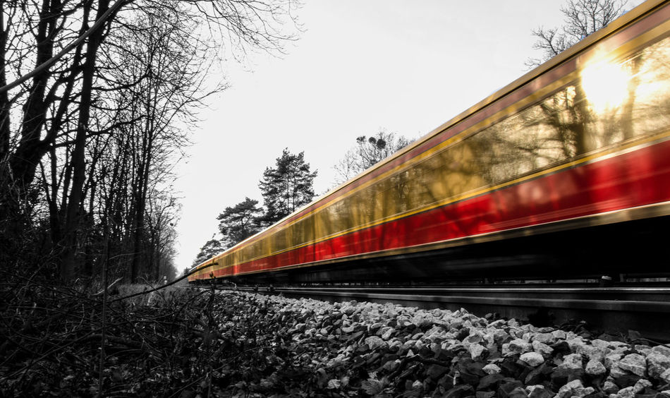 Diminishing Perspective Fast Keycolor No People Outdoors Railroad Track Railway Track Red Red Ride Rot S-bahn Sbahn Sky Speed Subway Surface Level The Way Forward Traffic Train Tree Vanishing Point Zug