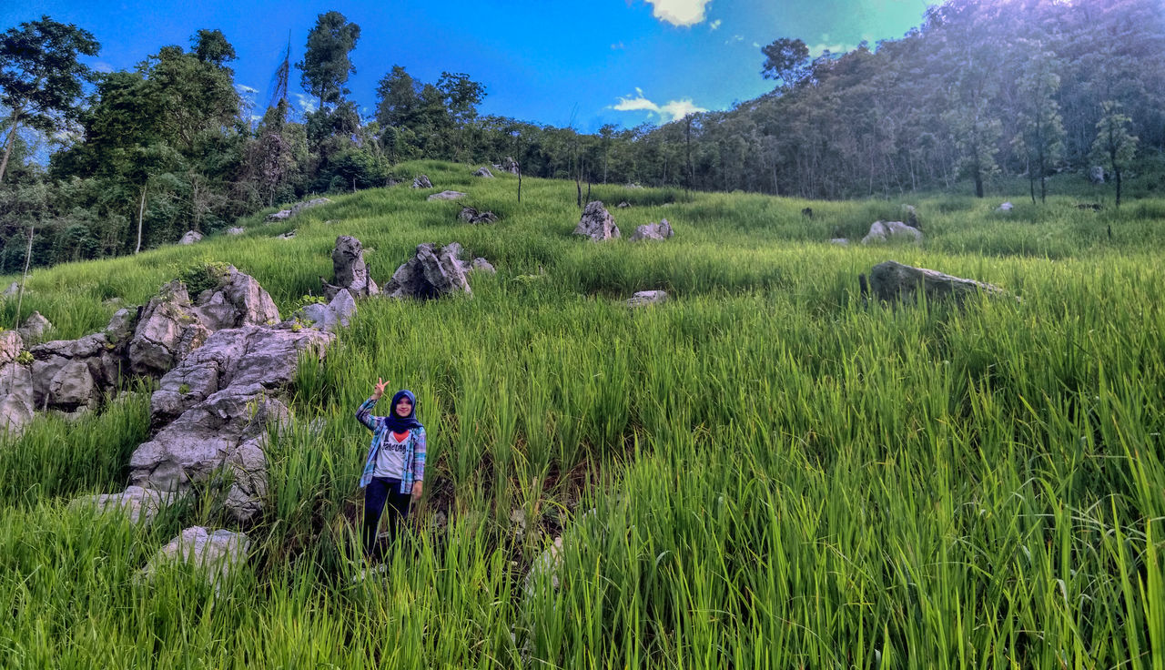 Manugal is rice paddy plantation system used by Dayak Meratus at South Kalimantan, the rice paddy are planted at hard and rocky soil at hill Adult Agriculture Beauty In Nature Day EyeEmNewHere Field Full Length Grass Green Color Growth Hiking Landscape Mountain Nature One Person Outdoors People Real People Rural Scene Scenics Travel Destinations Tree Vacations Women